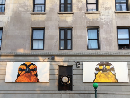 Celebrate spring with a tour of the Audubon Mural Project (or just check out the latest birds to hav