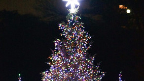 7 festive holiday trees in Harlem and beyond