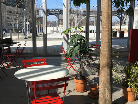Dear Mama's atrium-like new space mixes coffee with lots of sunshine