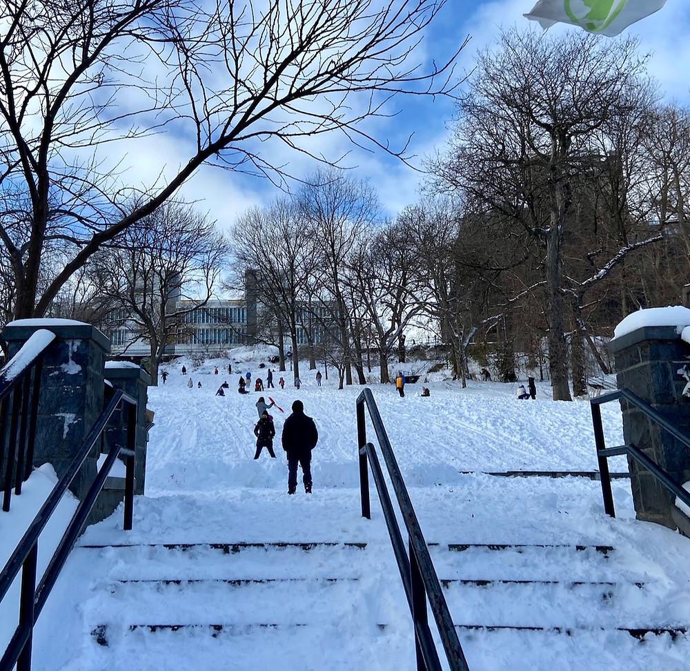Upper Manhattan's top sledding spots