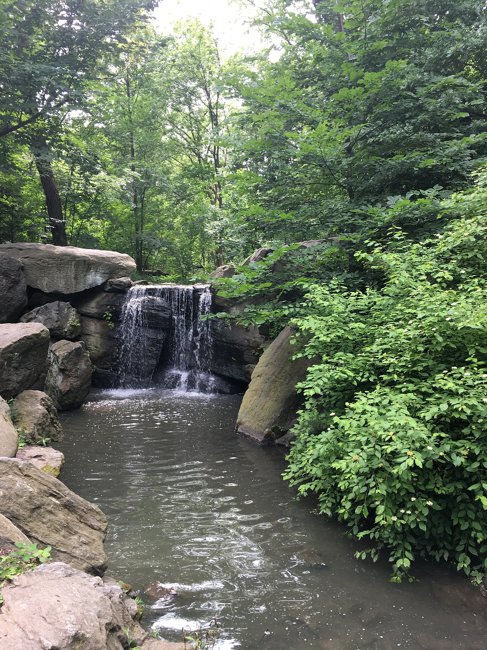 The cascades in Central Park's Ravine