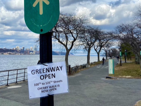 See it: Cherry Walk is back open after repairs—no more bumpy tree roots!