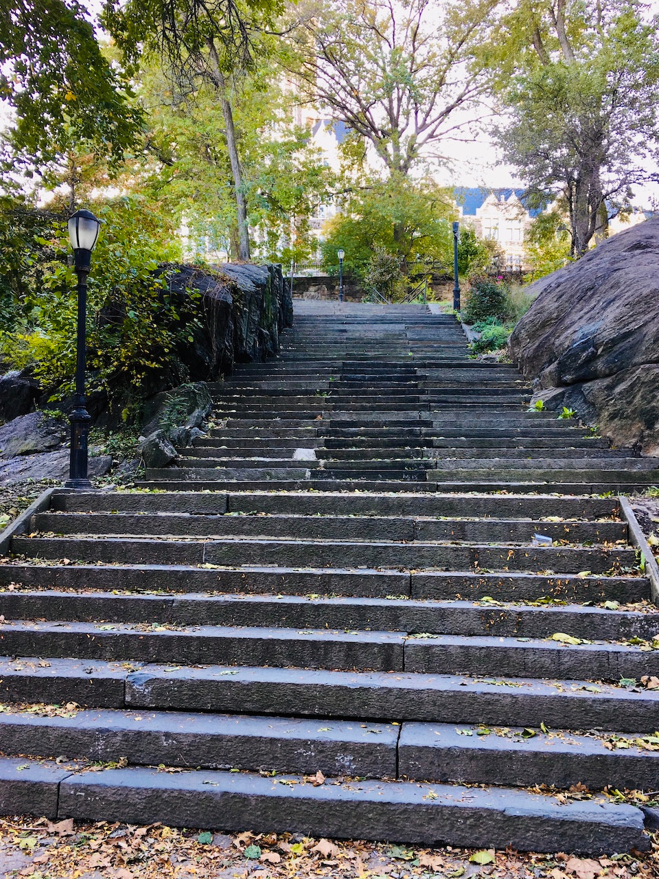 The stairs in St. Nicholas Park are great for a workout