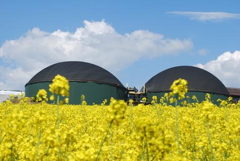Biogazownia 1,4MW - Lambsborn