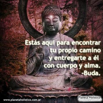 Meditation Spain