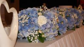 Floristik mit Hortensien
