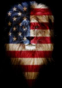 red, white blue lion.jpg