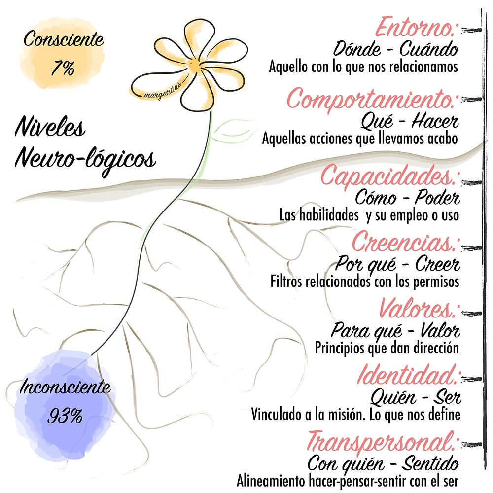 Niveles Neuro-lógicos. R.Dilts. Diseño de N para margaritas