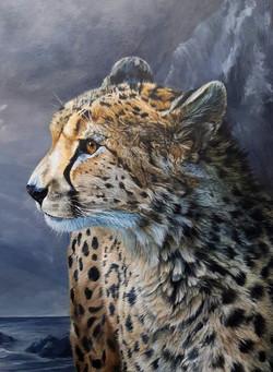 Steadfast Against the Storm Cheetah