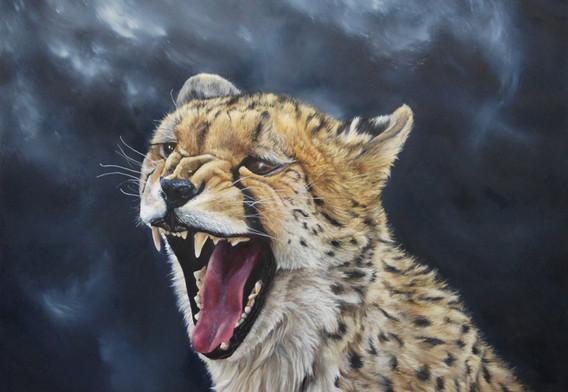 Wild Temper