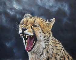 Wild and Fierce