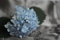 mini zen flower