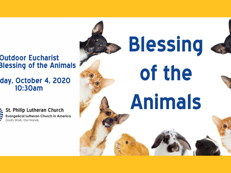 Blessing of the Animals - Sunday, October 4