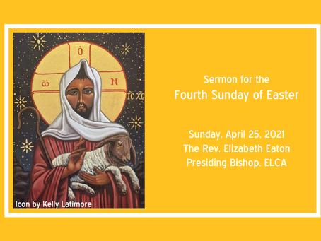 Good Shepherd Sunday + Earth Day (Fourth Sunday of Easter)