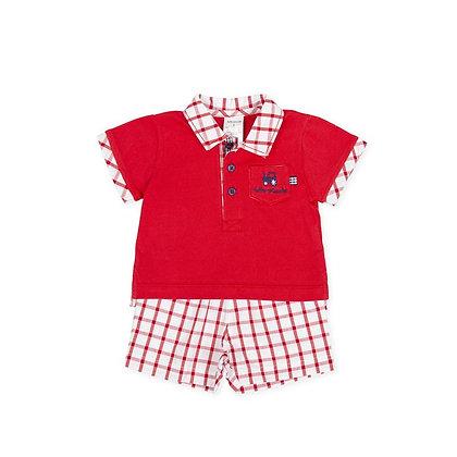 Baby Boys Red Checked 2pc Set Poloshirt shorts