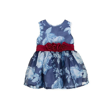 Blue Red Roses Flowers Occasion Dress
