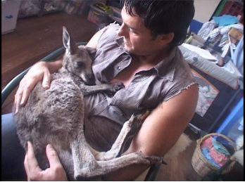 Zack+Heart+kangaroo+burnt.JPG