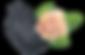 Floral logo.png