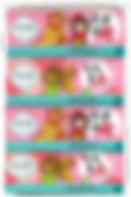 Pursoft CNY18 SP-BundleFront.png