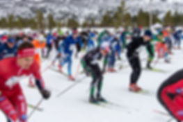 Start Skienern.jpg