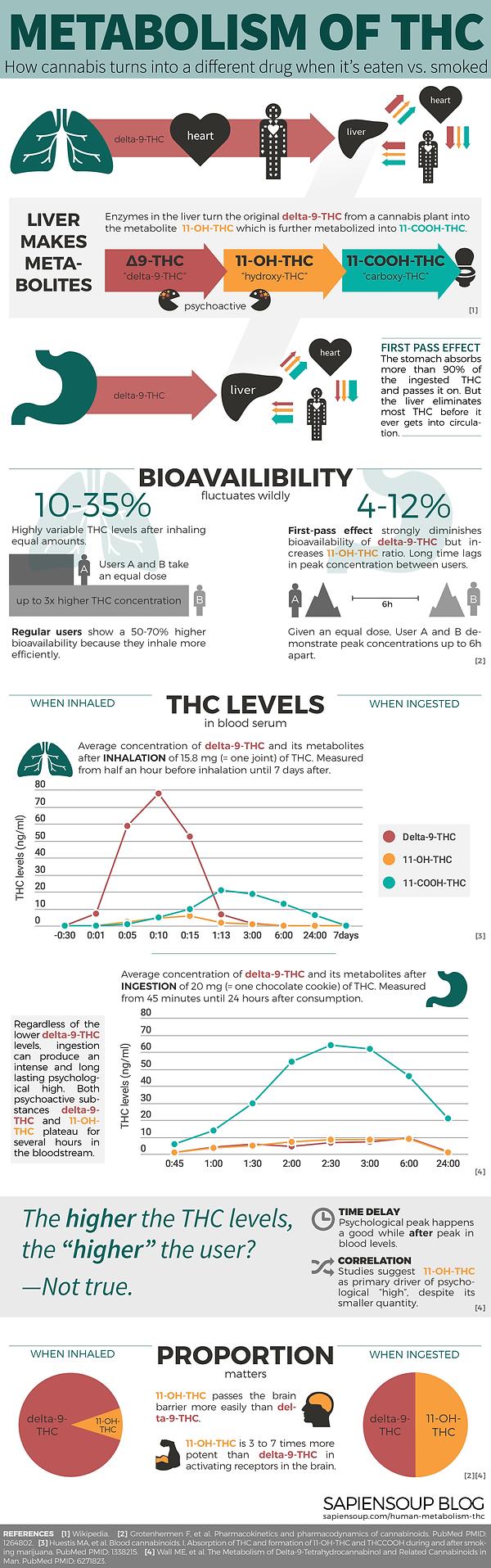 Infographic-Human-Metabolism-THC-1300.pn