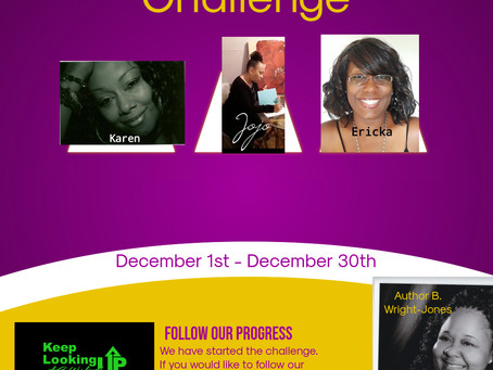 The 30 Day On-line Challenge Has Begun