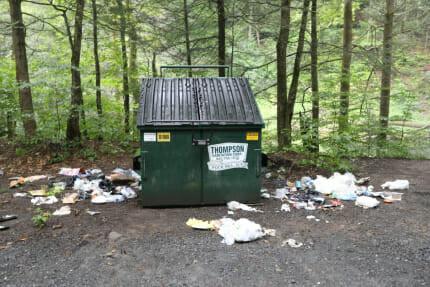detritus dans la nature autour d'une poubelle