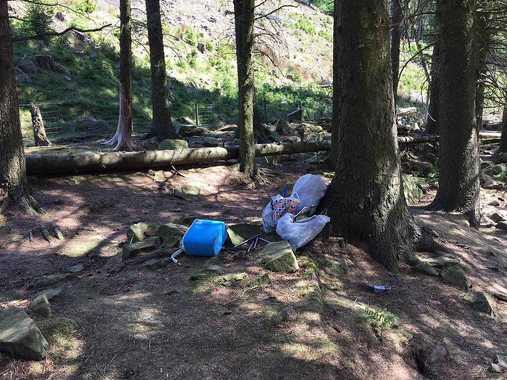 detritus dans la nature dans un parc sud