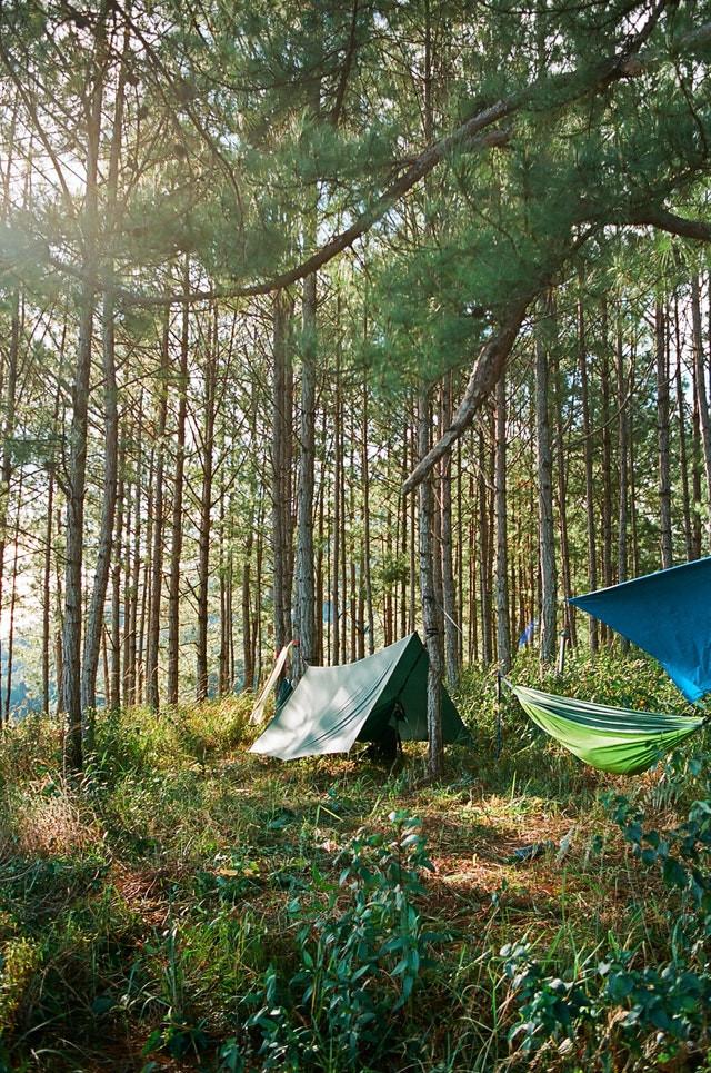 hamac de camping avec moustiquaire avec bache anti pluie