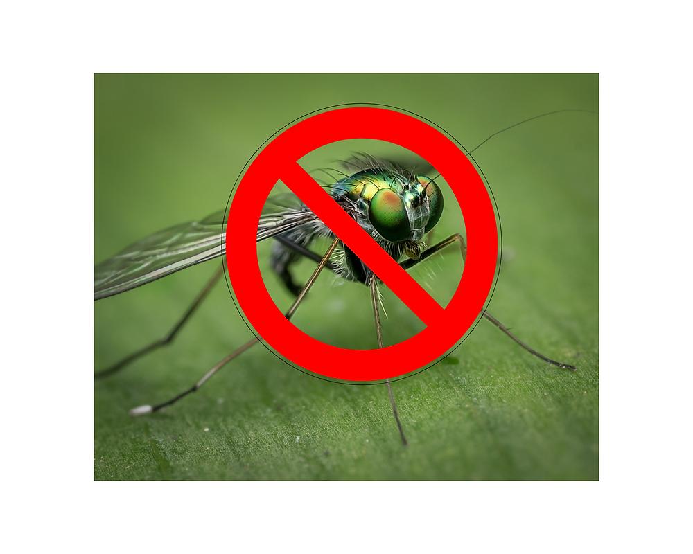 lampe anti moustique qui fonctionne
