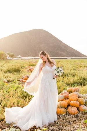 Renae Smith Photography