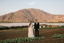 briananolan_wedding_LM_1-1527.jpg