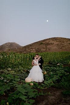 Leslie and Nick - California Wedding - p