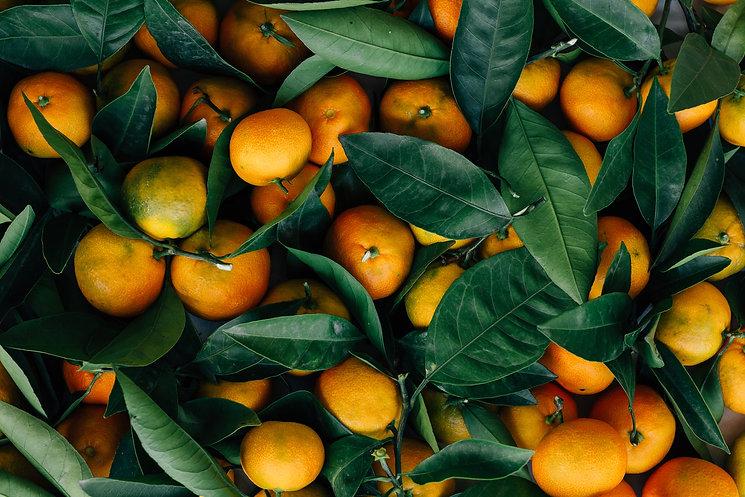 tangerines mandrins.jpg