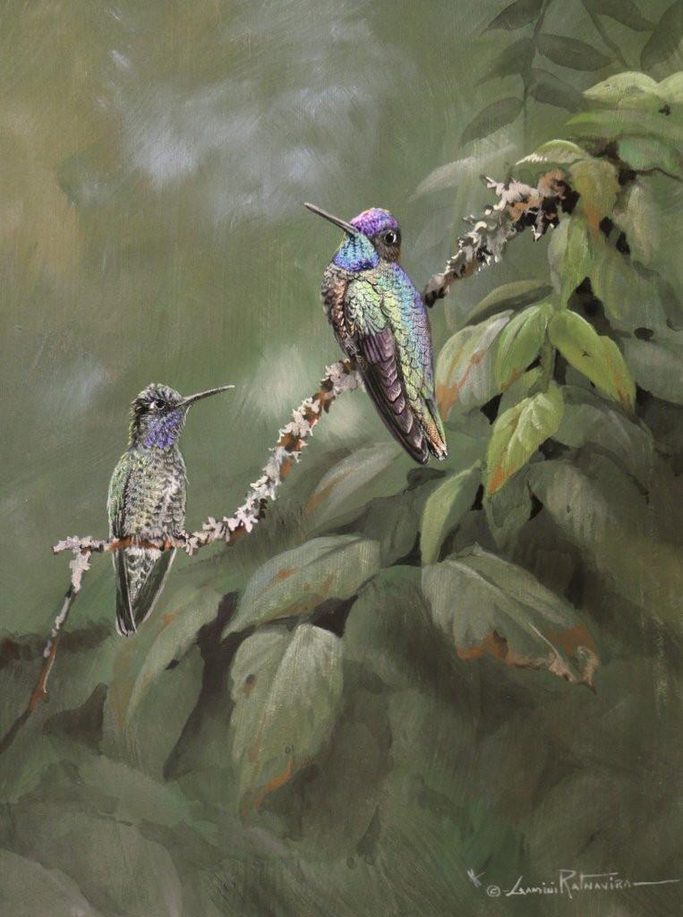 Magnificent Hummingbirds 9x12 Acrylic Go