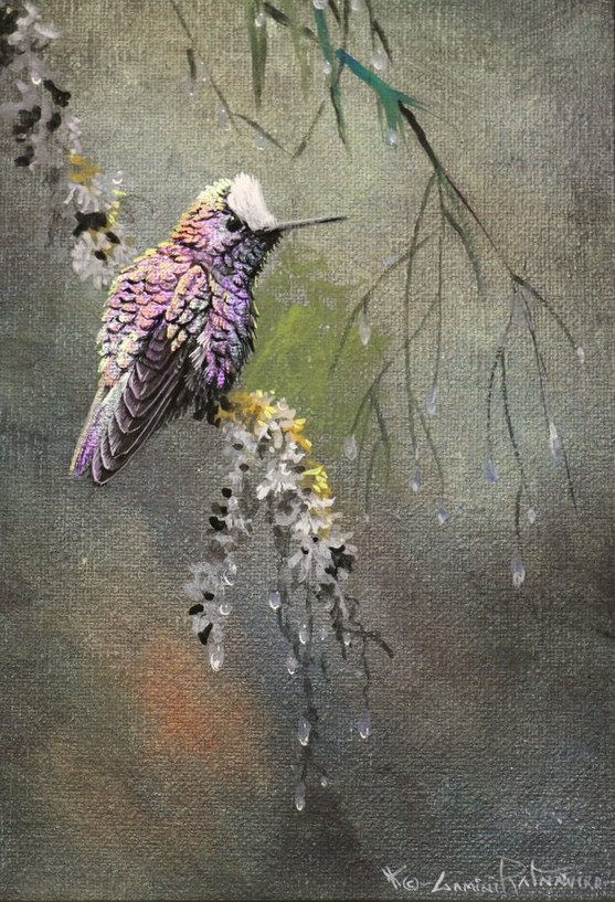 Snow Capped Hummingbird 5x7 Acrylic Gouc