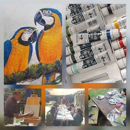 Turner Acryl Gouache Blue and Gold Macaw Workshop