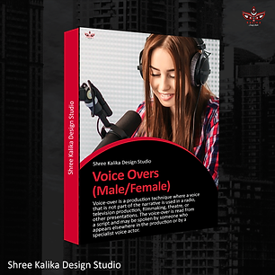 Voice-Over-Box-Packages-Website.png