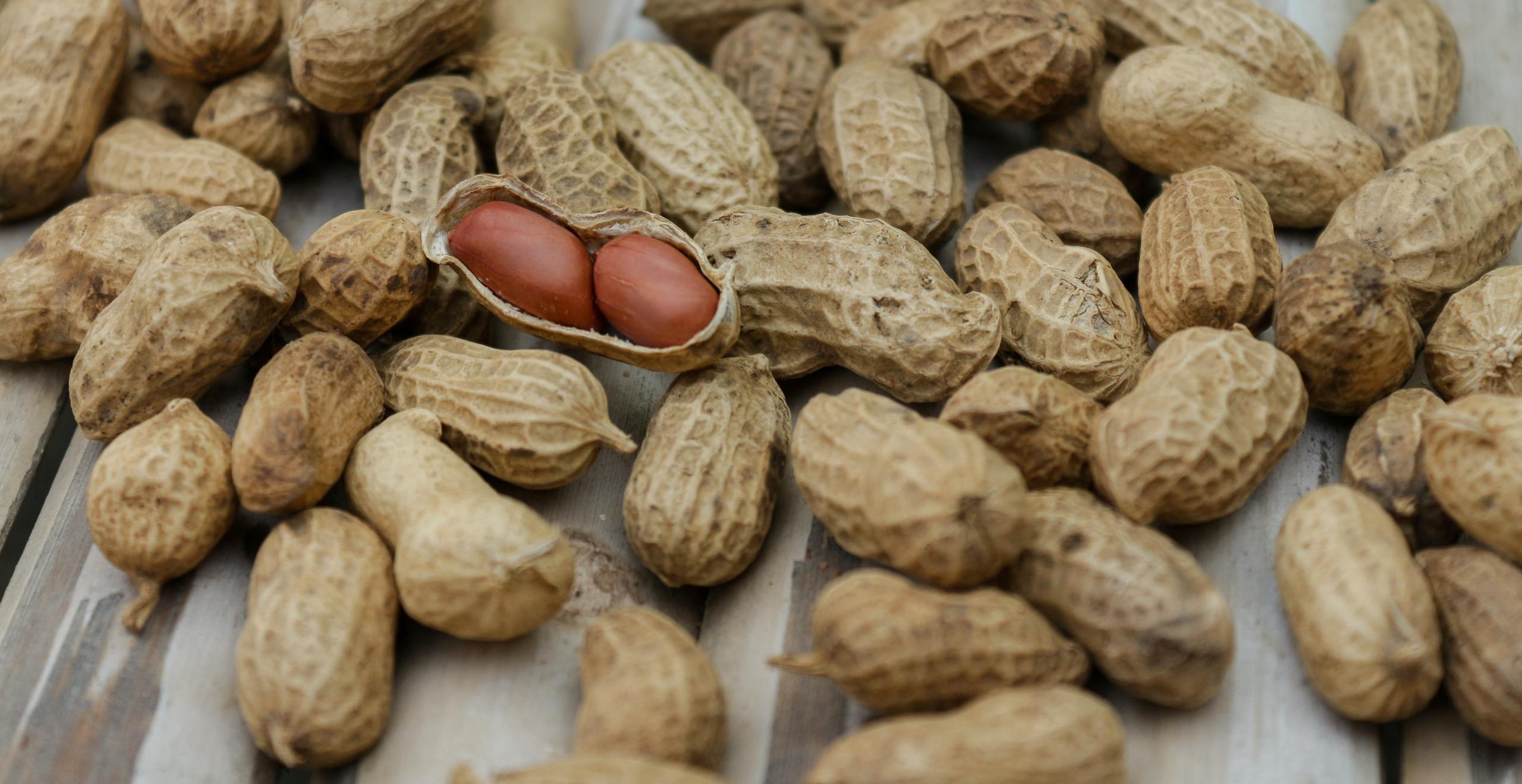 Ground Nuts are rich source of Vitamin E