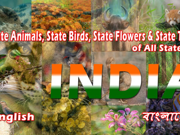 State Animals, State Birds, State Flowers & Trees of all States of India