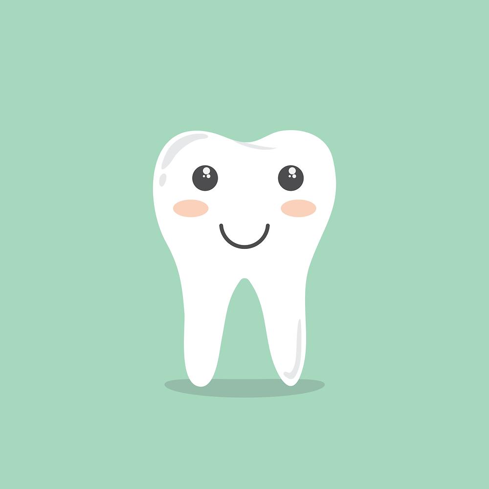 Vitamin D helps to build healthy teeth and bones in human body.