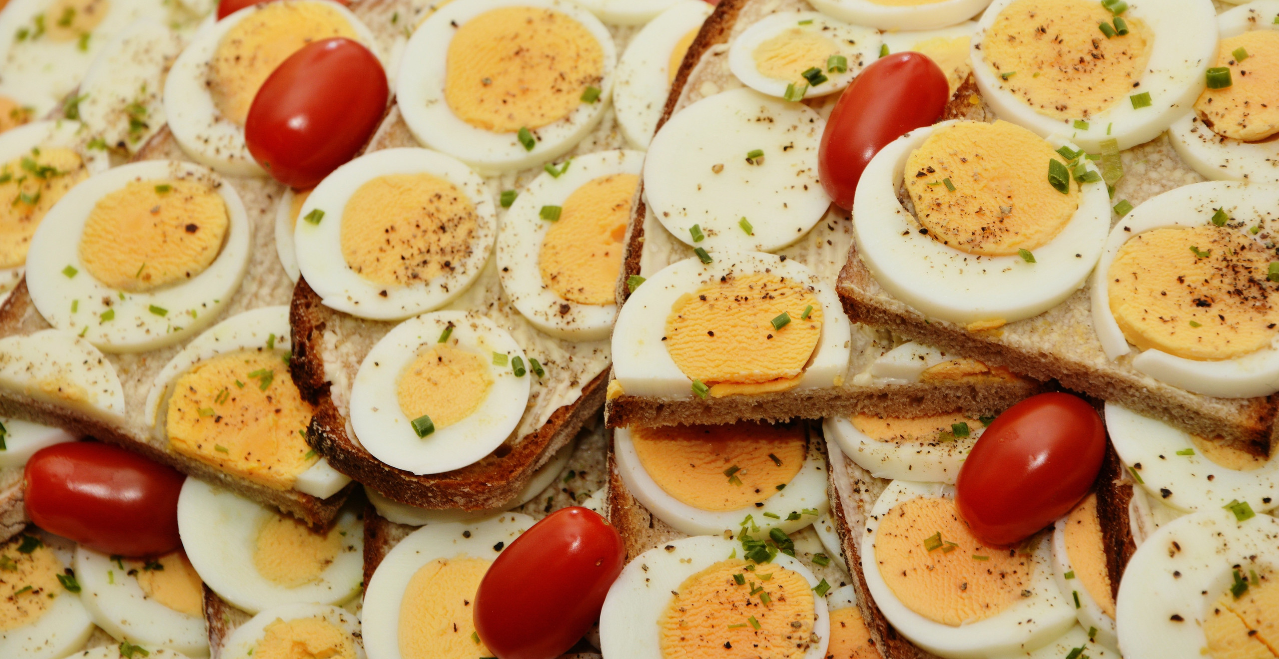 Egg Yolk is the rich source of vitamin D