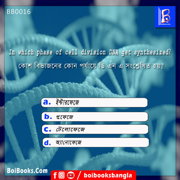DNA gets synthesized in which phase of cell division | GK Question | Quiz GK | BoiBooks
