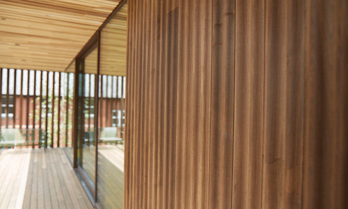 ThermoWood Tulipwood Cladding