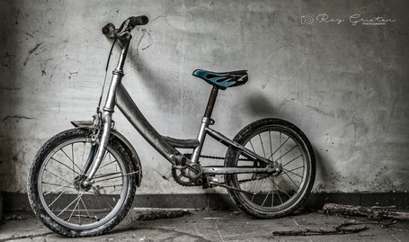 RAY_CHILDEREN'S_BIKE_DSC_0199 - Ray Grie