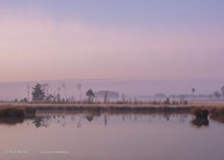grenspark-063835 - Mark Mertens.jpg