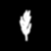 SELAH LOGO_Leaf-White.png