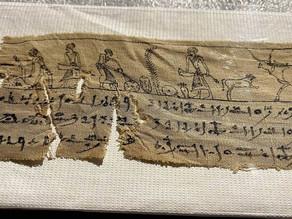 Egyptian stitch-up