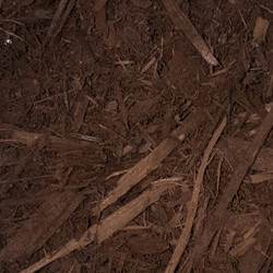 Cherry Brown Bark