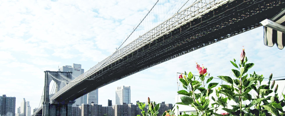 brooklyn bridge3.jpg